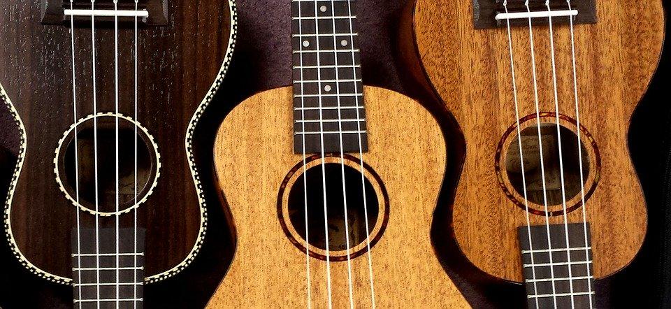 Ukelele, Caracol, Uke, Música, Cadenas, Instrumento