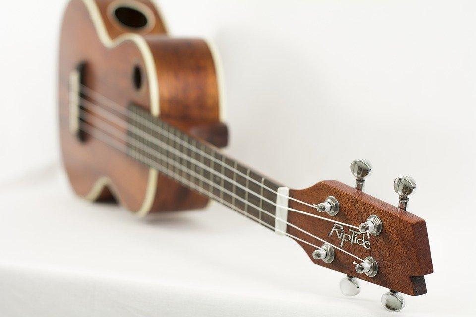 Ukelele, Instrumento, Música, Cadena, Acústica, Madera
